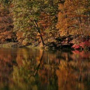Hocking Hills State Parks - Carefree Cabins, LLC